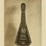 Harp-Guitar