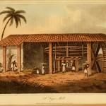 Eine Zuckermühle - A Sugar Mill