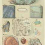 Amazonenstein, Labradorit, Feldspat, Adular, Opal, Feueropal