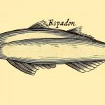 Schwertfisch - Espadon