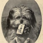 Dog with a letter