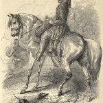 The Arab Horse